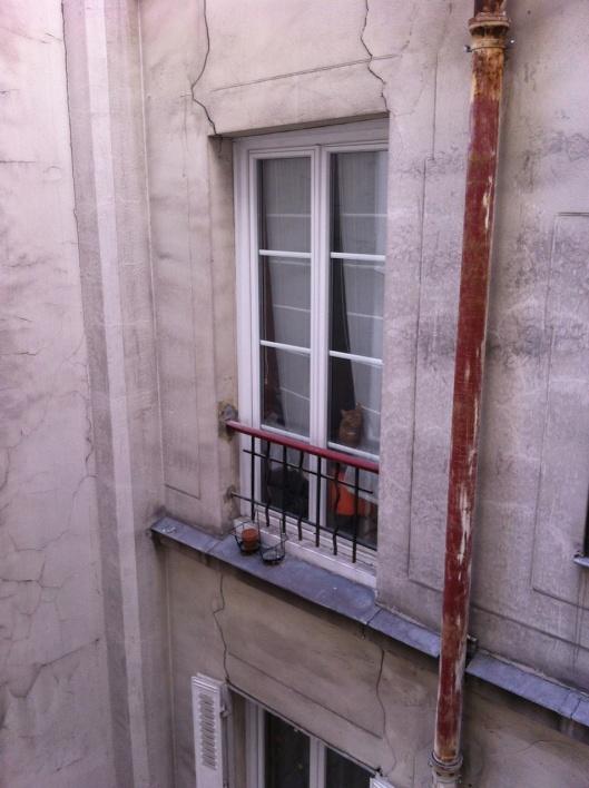 002_finestra-gatto180